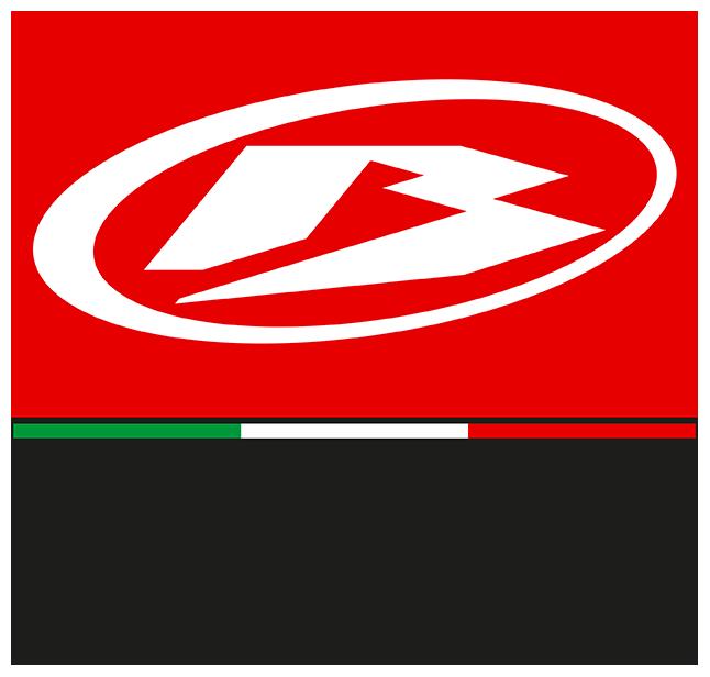 logo-Betamotor_n.png
